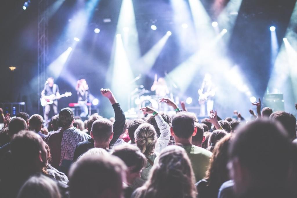 salud auditiva en un concierto