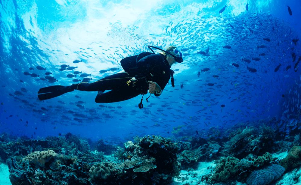submarinismo y acúfenos
