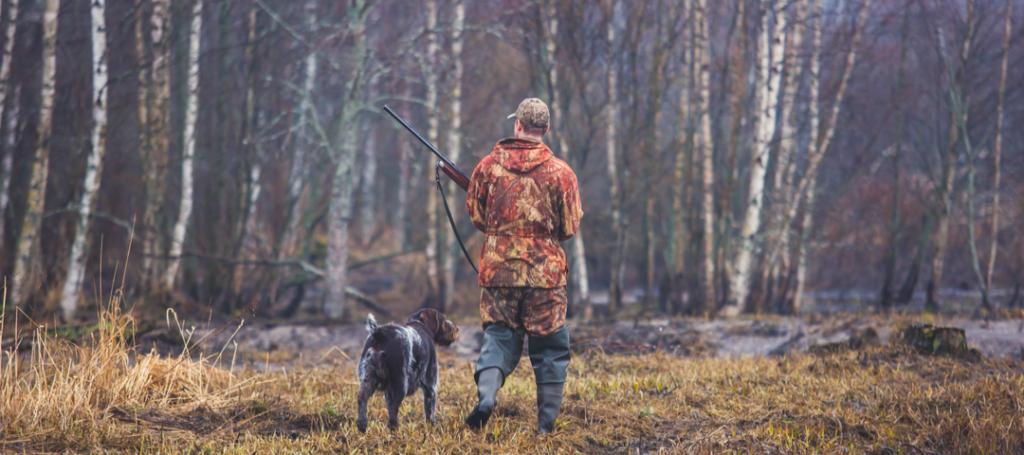 caza problemas auditivos